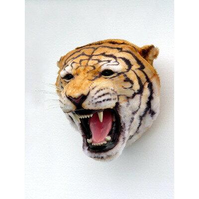 タイガーヘッド・ビッグフィギュア(壁掛けタイプ):ドリームフィギュア