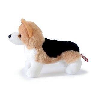 コーギトライカラー(M)犬ぬいぐるみ