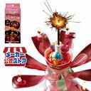 【1個 ドリームキャンドル デラックス お誕生日用】2個以上...