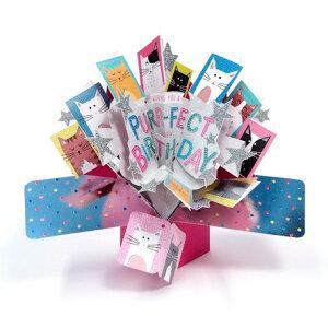 【 バースデーカード 飛び出す ねこ 】 送料180円 誕生日 カード おしゃれ 子ども 女の子 女性 ポップアップ 3D スマートレター メール便