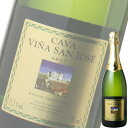 (単品) カヴァ ビニャ サン ホセ レゼルバ ブリュット (白) 750ml瓶 (スペイン) (スパークリングワイン) (TJB) (016)