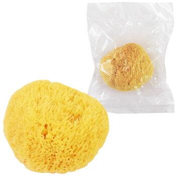 天然海綿(かいめん)1袋1個入り大粒タイプ(約5〜7cm)切って使えるから経済的!安心の吸収力で生理の時にも便利!