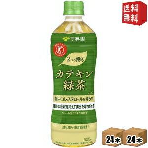 クーポン配布中 在庫処分特価&あす楽対応  伊藤園2つの働きカテキン緑茶500mlペットボトル48本(24本×2ケース) 二つの