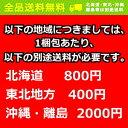 【送料無料】キリン 生茶340g缶 24本入※北海道800円・東北400円の別途送料加算 [39ショップ] 2