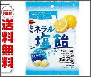 【送料無料】【2ケースセット】ブルボン ミネラル塩飴 100g×10袋入×(2ケース) ※北海道・沖縄・離島は別途送料が必要。