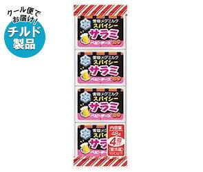送料無料【チルド(冷蔵)商品】雪印メグミルクスパイシーサラミベビーチーズ48g(4個)×15個入※北海道・沖縄・離島は別途送料が必要。