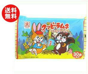 【送料無料】カクダイ製菓 クッピーファミリーパック 120g(4g×30袋)×12袋入 ※北海道・沖縄・離島は別途送料が必要。