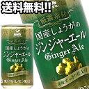 神戸居留地 国産しょうがのジンジャーエール 185ml缶×60本[20本×3箱]北海道、沖縄、……