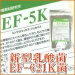 新型乳酸菌EF-621K菌細粒 30包(エンテロコッカス・フェカリス菌)【ド...