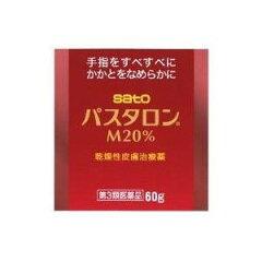 【佐藤製薬】パスタロンM20% 60g【第3類医薬品】【定形外郵便対応不可】
