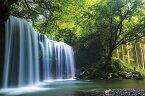 癒しの水簾(熊本県鍋ヶ滝) ジグソーパズル 風景 1000ピース 50×75cm 10-1349