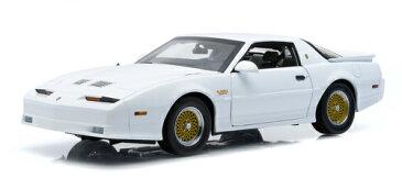 1989年モデル ポンティアック ファイアバード トランザム 1989 Pontiac Trans Am
