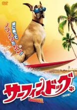 【中古】DVD▼サーフィン ドッグ 特別編▽レンタル落ち