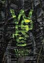 【アウトレット品】◇〉劇団EXILE/Words−約束/裏切り−【DVD・音楽】
