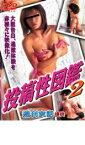 【バーゲン】【中古】DVD▼投稿性図鑑 2