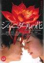 【中古】DVD▼シャニダールの花▽レンタル落ち