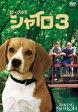 【バーゲン】【中古】DVD▼ビーグル犬 シャイロ 3 最終章 特別版▽レンタル落ち