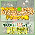 SHIZUGAKU サッカースタイル 〜個人力upで局面を打開する!〜 (全2枚)