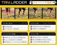 【送料無料】Jリーガーや五輪代表も使っている個人向けスピード強化トレーニング!taniladder