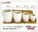 【特別プライス&送料無料(同梱不可商品】4鉢セットだから、特別お買い得プライス!お部屋に統一感・白の陶器鉢4つSET tc15 ※商品に植物は含まれません