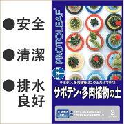 多肉植物 サボテン リットル プロトリーフ