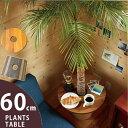 これ、お勧め!部屋に観葉植物がある人は、是非お試し下さい。置き場所を有効に使う。見た目も素敵。木...