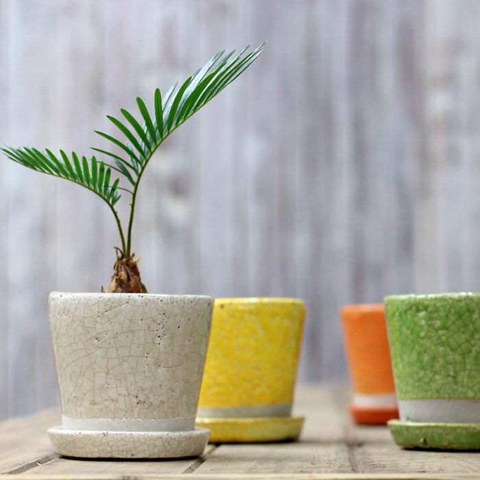 カラー陶器鉢Sサイズ