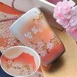 【名入れ専門】【名入れギフト 陶器】有田焼 赤富士 白生地 フリーカップ 単品