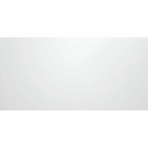 ニチレイマグネット マグネスクリーン MS-9018 70型ワイド【so-349286】