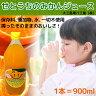 大三島果汁工業(株) せとうちのみかんジュース 900ml