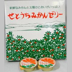 なめらかな食感と程良い酸味をお楽しみください。大三島果汁工業(株) せとうちみかんゼリー...
