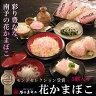 (株)谷本蒲鉾店 削りかまぼこ 5袋入