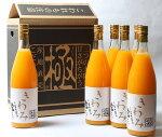 濱田農園きわみジュース6本