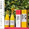 (株)NADA ナダオレンジジュース・清見タンゴールジュース2本セット