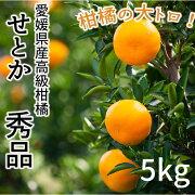 【予約販売】(株)サンマルシェ愛媛県産高級柑橘せとか秀品5kg〈日時指定不可〉