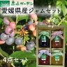 高山ガーデン愛媛県産ジャム4点セットブルーベリー、いちご、いちじく、ゆず