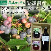 (有)高山ガーデンブルーベリージュース&ジャムセット(ブルーベリー、いちご)