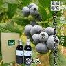 (有)高山ガーデン 愛媛県産ブルーベリージュース(ストレート)2本入り