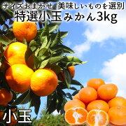 (株)濱田農園特選みかん(小玉)3kg