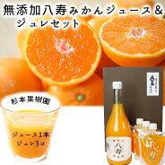 杉本果樹園無添加八寿みかんジュース100%とジュレ170g×3個セット