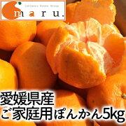 (株)修斗愛媛県産ぽんかん(ご家庭用)5kg