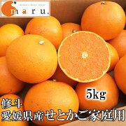(株)修斗愛媛県産せとか(ご家庭用)5kg