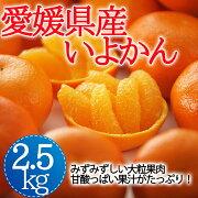【愛媛県産】(株)オレンジフーズ伊予柑2.5kg【日時指定不可】