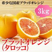 【愛媛県産】(株)オレンジフーズタロッコオレンジ(ブラッドオレンジ)3kg【日時指定不可】