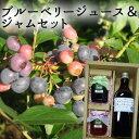 【20%OFFクーポン配布中!】(有)高山ガーデン ブルーベリージュース&ジャムセット(ブルーベリー、いちご)