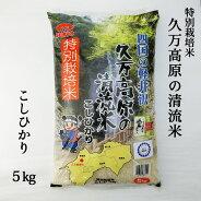 (株)さんさん久万高原久万高原の清流米こしひかり精米5kg
