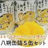 (株)グリップコーポレイション 八朔缶詰5缶セット