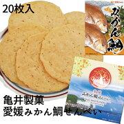 亀井製菓(株)愛媛みかん鯛せんべい20枚入