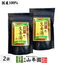 【高知県産生姜】【大容量600g】黒糖生姜湯 300g×2袋
