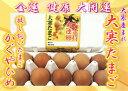 大寒卵 20個入 大寒たまご 放し飼い卵 送料無料 金運卵 高級卵